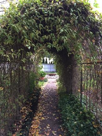 Grönt valv i Botaniska trädgården