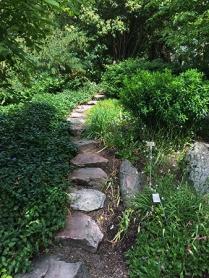 Grönska och stig i Botaniska