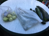 Äpplen krondill i påse och squash