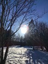 Solen skiner på snön