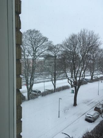 Snö den 3 mars 2019