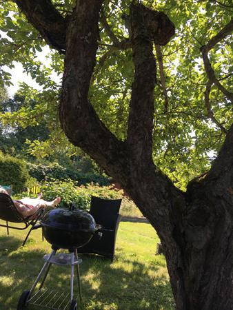 Semester i trädgården